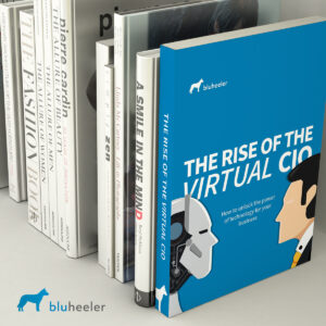 The Rise of the Virtual CIO